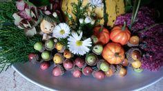 Nep pompoenen en eikels met in het midden witte herfst aster.