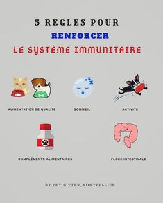 5 règles faciles et efficaces pour renforcer le système immunitaire de son chien et de son chat. Retrouvez également le top 20 pour booster son organisme. Pour d'autres conseils d'experts et astuces rdv sur Instagram sur @pet_sitter_montpellier. LE compte Instagram à suivre de toute urgence quand on a un animal Make Money Fast, Make Money From Home, Earn Money, Make Money Online, Making Money On Youtube, Millionaire Mentor, Success Coach, Mind Tricks, Day Trader
