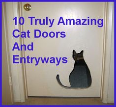 10 Truly Amazing Cat Doors And Entryways ... Need a good cat door, but want something better than the standard flap? Here are some amazing and unique cat doors to give you some ideas. ... #petcaretips #pets #animals ... PetsLady.com