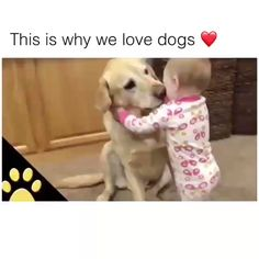 Dogs are So Loyal That's Why I Love Dogs - Cutest Baby Animals Cute Little Animals, Cute Funny Animals, Funny Cute, Funny Dogs, Smart Animals, 9gag Funny, Derp Dogs, Dog Quotes Funny, Dog Memes