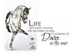 life... horse Valegro