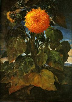 Bartolomeo Bimbi Oil Paintings For Sale Oil Painting For Sale, Sun Painting, Plant Painting, Fine Art Prints, Canvas Prints, Framed Prints, Artist Van Gogh, Planting Sunflowers, Historia Natural