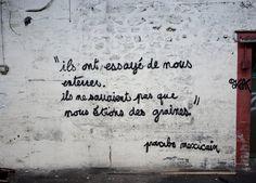 "Street art | Mural ""Ils ont essayé de nous enterrer. Ils ne savaient pas que nous étions des graines. –dixit proverbe mexicain [They tried to bury us. They did not know we were the seeds. –dixit Mexican proverb]"" by OaKoAk. Tribute to Charlie Hebdo and those fallen."