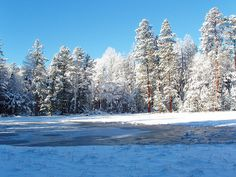 Alpine is the coldest place in Arizona. It's deep valley and tall surrounding mountains make for a frozen and secluded lake during the winter. You feel like you could whisper and the vastness would carry your voice to the other end of the landscape! #alpine, az #arizona #snowy arizona