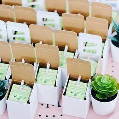 Candles, Succulents, Cactus, Homewares Creative Inspiration, Serenity, Cactus, Succulents, Place Cards, Container, Place Card Holders, Candles, Succulent Plants