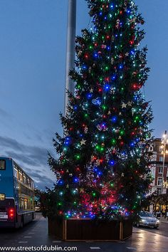 Christmas Tree In O'Connell Street (Dublin)