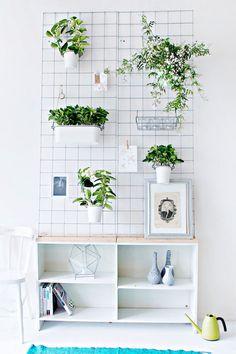 Green Diy Wall Planter, Lana Red Studio