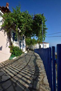 5 Μαΐ 2020 - Ολόκληρο σπίτι/διαμέρισμα for convient appartment in the centre of village Glossa,with a wonderfull view. Glossa is a. Skopelos Greece, Sidewalk, Places, House, Home, Side Walkway, Walkway, Homes, Walkways
