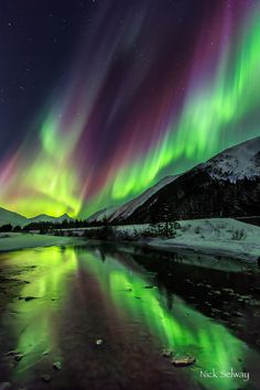 Alaska, March 2013 by Nick Selway