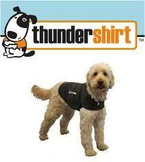 Thundershirt...We've had some good reviews on this product from our clients. Great for a non-medicinal alternative to storm & firework anxiety.  Works for other anxieties as well.