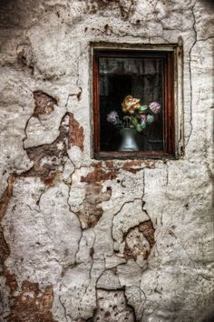 Just Let Some Flowers in Your Window - Aitor Arana (Print)