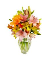 12 stemps of Assorted Colours Asiatic lillies in a Vase.