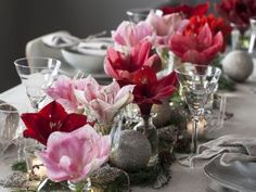 Slik pynter du et vakkert julebord med amaryllis Babysitting, Hygge, Glass Vase, Table Decorations, Christmas, Furniture, Home Decor, Backyard Patio, Xmas