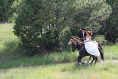 I want to incorporate horses in my wedding somehow :)