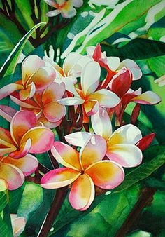 kathleen alexander watercolor -