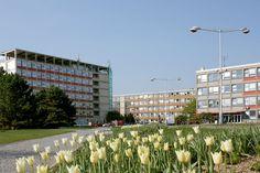Ceska zemedelska univerzita v Praze, Czech Republic