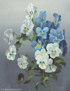Vintage Home Shop - Pretty Victorian Blue and White Pansies Oil Painting: www.vintage-home.co.uk