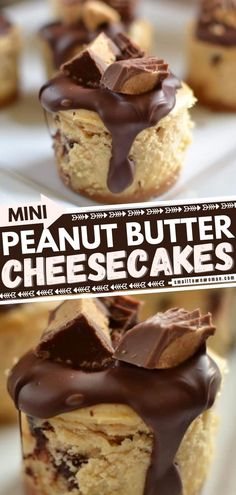 Calling all peanut butter lovers! Satisfy your sweet tooth with this Valentine's Day treat. Topped with melted Ghirardelli chocolate and Reese's mini peanut butter cups, these mini cheesecakes are the perfect Valentine's Day dessert for a crowd. Save this recipe! Small Desserts, Desserts For A Crowd, Mini Desserts, Easy Desserts, Keto Desserts, Peanut Butter Cheesecake, Peanut Butter Cups, Cheesecake Recipes, Christmas Desserts Easy