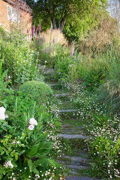 Hillside Garden, Meadow Garden, Hillside Landscaping, Sloped Garden, Gravel Garden, Woodland Garden, Garden Landscape Design, Dream Garden, Garden Paths