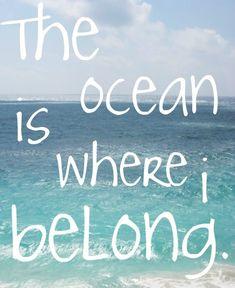 The ocean...