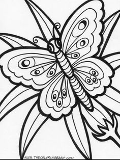 butterfly printable free adult coloring pagesflower
