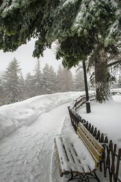 ideas nature paysage hiver for 2019 Winter Forest, Winter Szenen, Winter Love, Winter Magic, Winter Walk, Winter Holidays, Winter White, Snow Pictures, All Nature