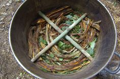 If you are thinking of embarking on your first ayahuasca experience, here are the 10 most important things you need to know before you do.