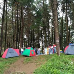 Meski piknik adalah opsi ibadah tetep sing dadi solusi. Eling ojo ninggal sholat nek gak pengen di #telolet malaikat.  Lokasi: Setro Bate Foto: @sururi_jucky  #explorebatealit #visitjepara #jatenggayeng #visitjawatengah #jepara #jawatengah #kompasnusantara