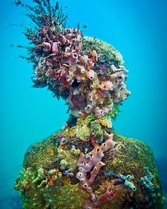 Jason deCaires Taylor is an english sculptor specialising in the creation of contemporary underwater sculptures which over time develop into artificial coral reefs. Underwater Sculpture, Underwater Photos, Underwater Photography, Film Photography, Street Photography, Landscape Photography, Nature Photography, Fashion Photography, Wedding Photography