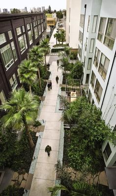 For the courtyard of the newly developed Pacific Cannery Lofts, landscape architect Jeffrey Miller honored the site's industrial past by recycling machine wheels, gears, and engines from the old factory as art objects in the new garden. With multiple outdoor rooms, included a Living Room courtyard surrounded by tree fens and a Dining Room courtyard under three-story palms, the space has gone from forgotten remnant to urban oasis.