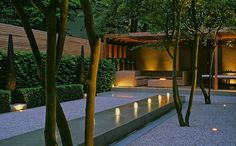luciano giubbilei. linear water feature, white gravel, box hedging, multi-stemmed trees, minimalist planting scheme