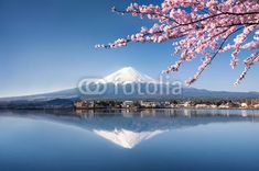 Fototapeta Berg Fuji w Japonii Kawaguchiko - coloray.pl