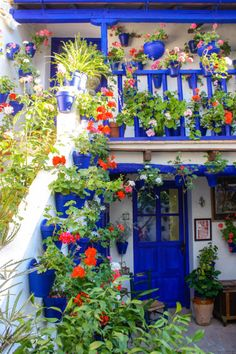 Los Patios, Cordoba, Spain; annual porch competition