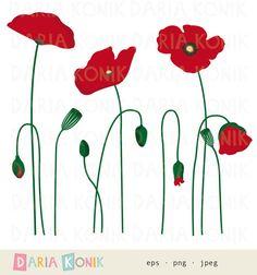 Clipart di Clip Art Set-fiore papaveri botanica di dariakonik