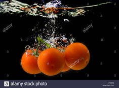 Download this stock image: Ripe tomatoes fall into the water. Splash of water. - P45E66 from Alamy's library of millions of high resolution stock photos, illustrations and vectors.