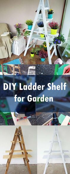 Have you got an old ladder? If yes then in this DIY ladder shelf tutorial we will show you step by step that how an old ladder can be made into an astonishing plant holder.
