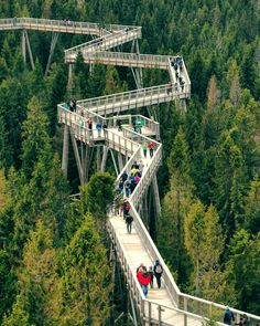Slovenia Travel, Fair Grounds, Instagram, Fun, Bridges, Traveling, Beauty, Viajes, Trips