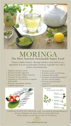 ORIG PIN: Moringa Oleifera is a super food. Heard abt it on morning shows, beauty magazine articles, Dr. & theres actually tons of info (why? - maybe bc u can never be too prepared for the zombie apocalypse? Moringa Benefits, Health Benefits, Moringa Leaves, Tea Benefits, Health And Nutrition, Health And Wellness, Health Tips, Zeal Wellness, Moringa Oleifera
