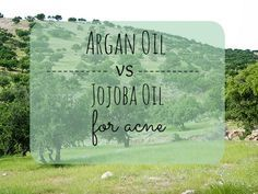 Argan Oil vs Jojoba Oil for Acne Argan oil and Jojoba oil are great for acne, but which one is better? Learn all you need to know about these 2 oils, and decide which is best. Argan Oil Uses For Hair, Argan Oil Hair, All Natural Skin Care, Organic Skin Care, Natural Face, Natural Oils, Natural Health, Argan Oil Vs Jojoba Oil, Argan Oil Skin Benefits