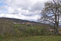 Camiño de San Rosendo IV. De Celanova a Parderrubias | Roteiros galegos