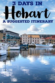 Enjoy 3 days in Hobart by using this Hobart itinerary which details the best things to do in Hobart, day trips from Hobart, restaurants in Hobart, attractions in Hobart and much more. Australia Travel Guide, Visit Australia, Hobart Australia, Tasmania Road Trip, Tasmania Travel, Vacations To Go, Dream Vacations, Hobart Restaurants, Scuba Diving Australia