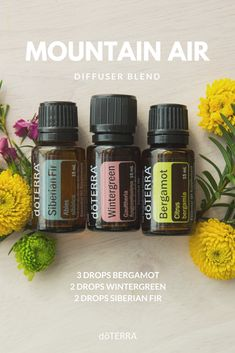 doTERRA Wintergreen Essential Oil Uses Beste ätherische Öle Doterra Wintergreen, Wintergreen Essential Oil, Essential Oils For Headaches, Essential Oil Diffuser Blends, Doterra Oils, Doterra Essential Oils, Bergamot Essential Oil Uses, Aroma Diffuser, Health