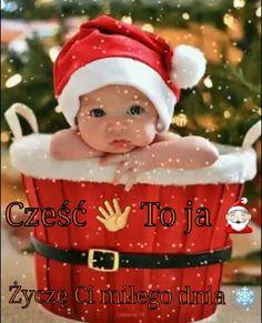 Christmas Wishes, Christmas Cards, Merry Christmas, Xmas, Christmas Ornaments, Cute Gif, Tis The Season, Beautiful Roses, Elf On The Shelf