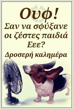 Good Night, Good Morning, Humor, Memes, Funny, Babys, Greek, Animals, Quotes