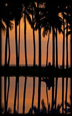 Wadduwa > Sri Lanka > Asia | by Aman Iman ॐ