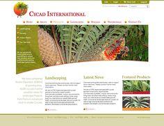 Cycad International Web Site by Scorched Media - www,scorchedmedia.com.au Brisbane, Landscape Nursery, Portfolio Web Design, The Expanse, Indoor Plants, Inside Plants, Plant Nursery