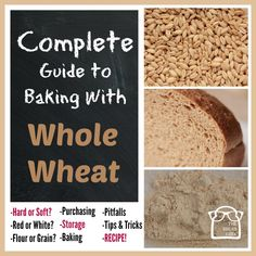 Complete Guide to Baking with Whole Wheat cover|via www.TheBreadGeek.com