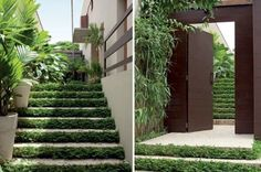 Planted Staircase