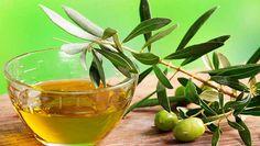 El extracto de la hoja de olivo es uno de los ingredientes naturales más potentes para la salud. Desde hace mucho tiempo, los científicos lo han estudiado a fin de descubrir sus propiedades beneficiosas.Los resultados han demostrado que este extracto es muy poderoso para combatir muchas enfermedades. A continuación te ...