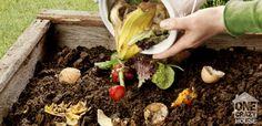 30 cosas que usted puede poner en compost